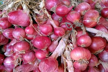 4 Kandungan Bawang Merah Untuk Kesehatan Tubuh